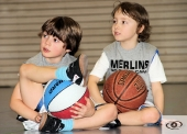 merlins@school